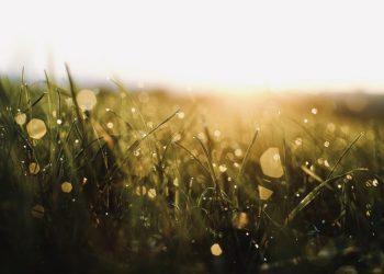 In dem Augenblick … Montagsimpulse (206)
